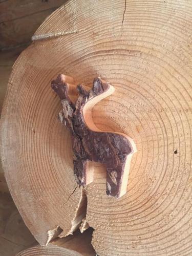 Chalet en bois de Janvry
