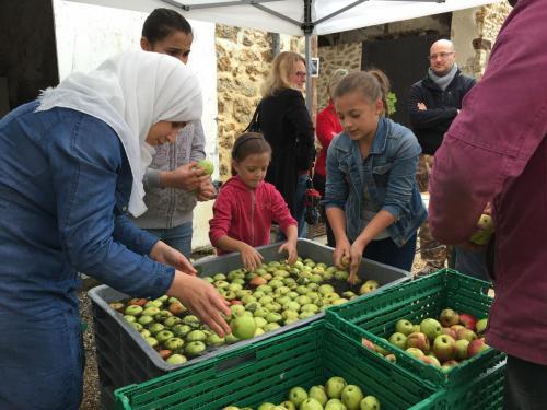 janvry-fete-de-la-pomme-pommes
