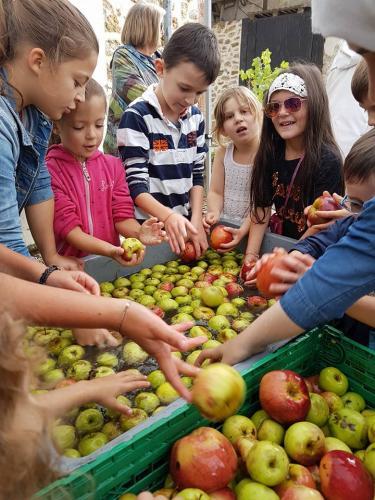 janvry-fete-de-la-pomme-pommes2