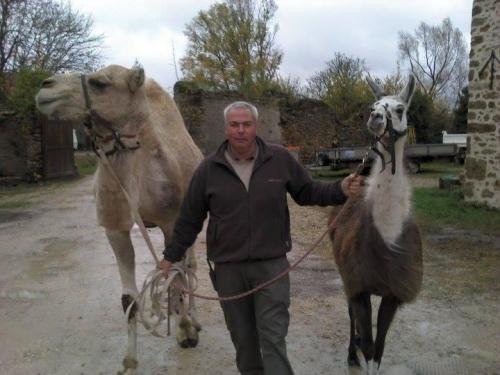 janvry-jerome-animaux