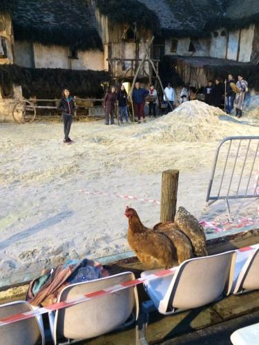 janvry-spectacle-poule-repet